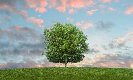 Le réchauffement climatique: c'est quoi au juste?