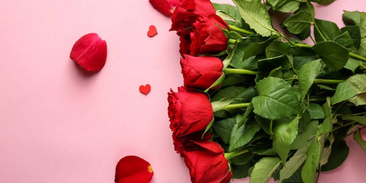 Nombre de roses : signification