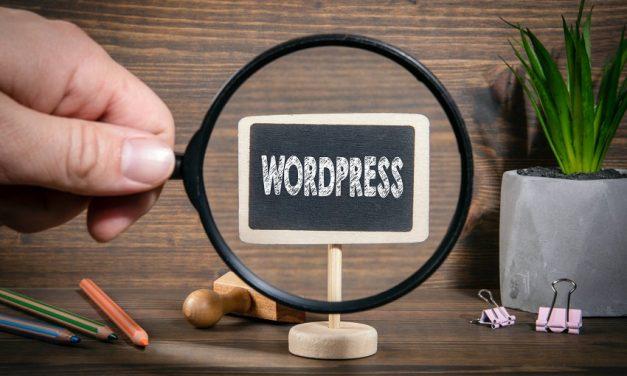 Extra : le thème WordPress qu'il vous faut