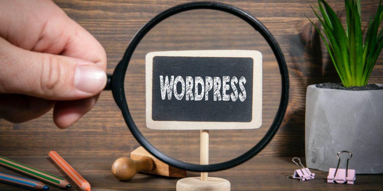Le thème WordPress Divi