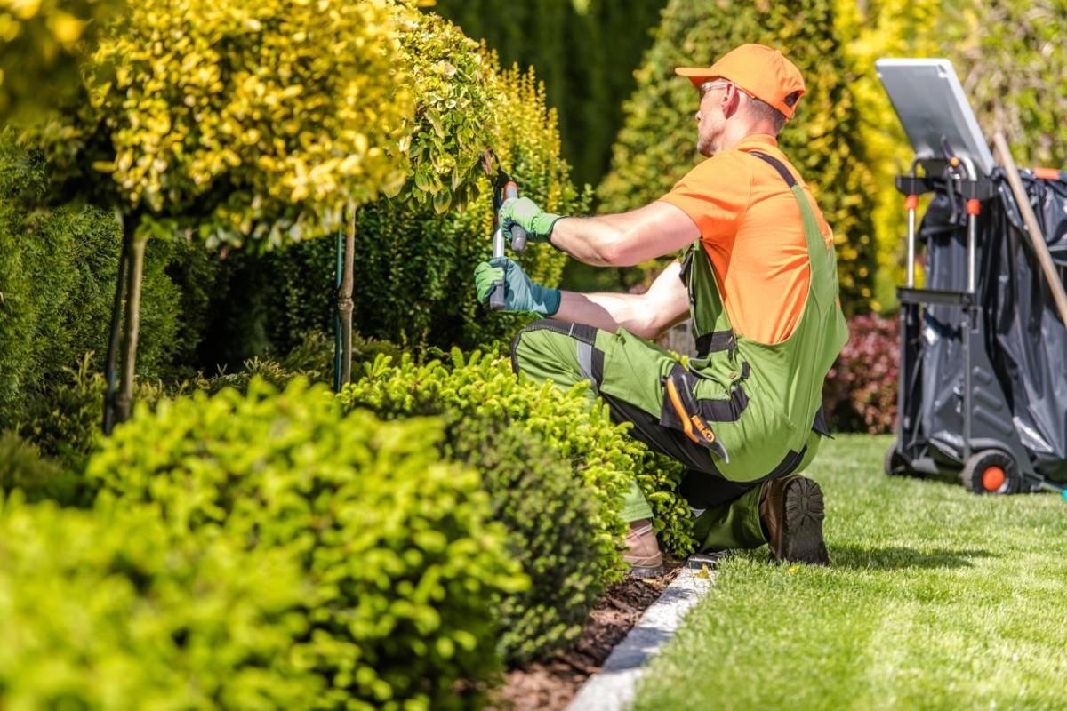 entretenir votre jardin