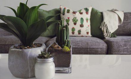 4 idées simples et rapides pour améliorer sa décoration intérieure