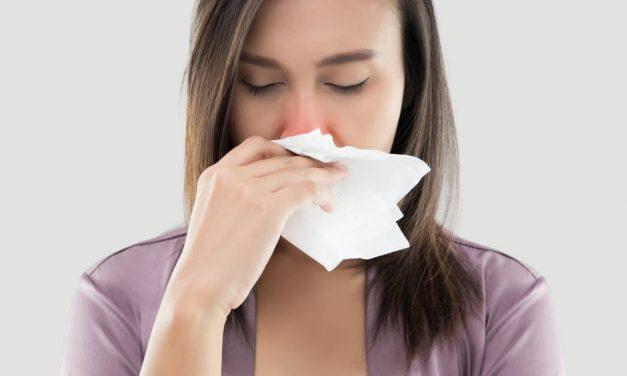 Allergie aux acariens : pensez à la couette naturelle